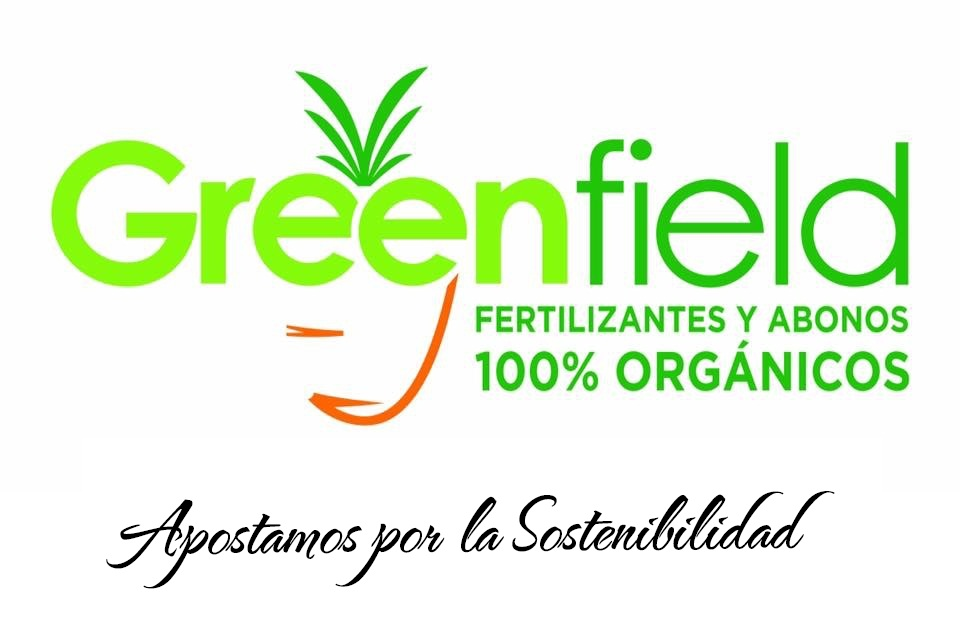 greenfield_completo